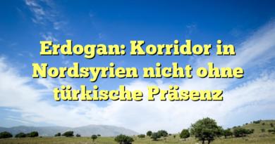Erdogan: Korridor in Nordsyrien nicht ohne türkische Präsenz
