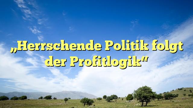 """""""Herrschende Politik folgt der Profitlogik"""""""