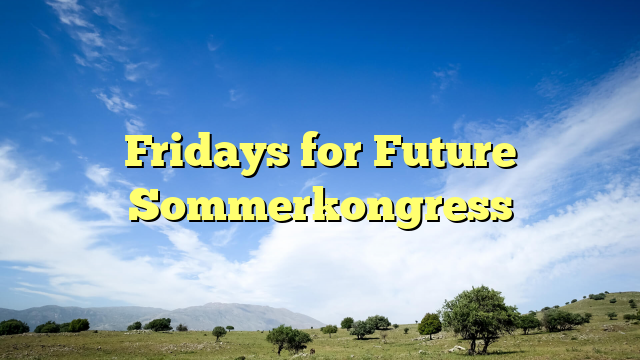 Fridays for Future Sommerkongress