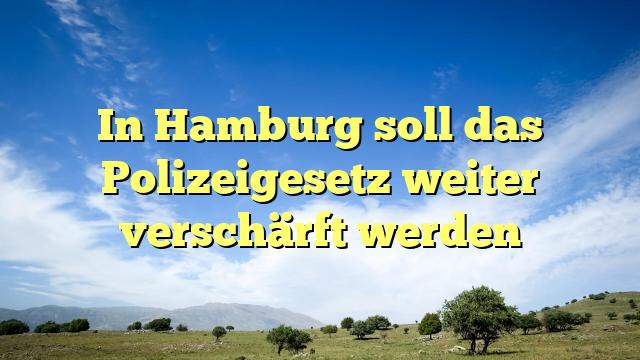 In Hamburg soll das Polizeigesetz weiter verschärft werden
