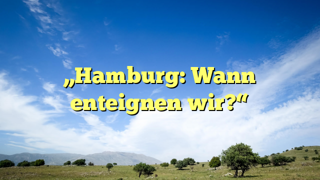 """Hamburg: Wann enteignen wir?"""